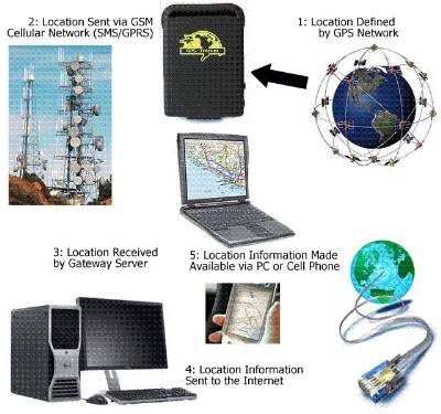 Spy Gps Vehicle Tracker In Delhi