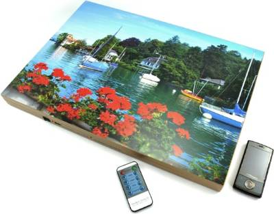 High Power Mobile Phone Jammer In Painting In Delhi